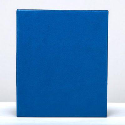 Альбомы-папки эконом класса